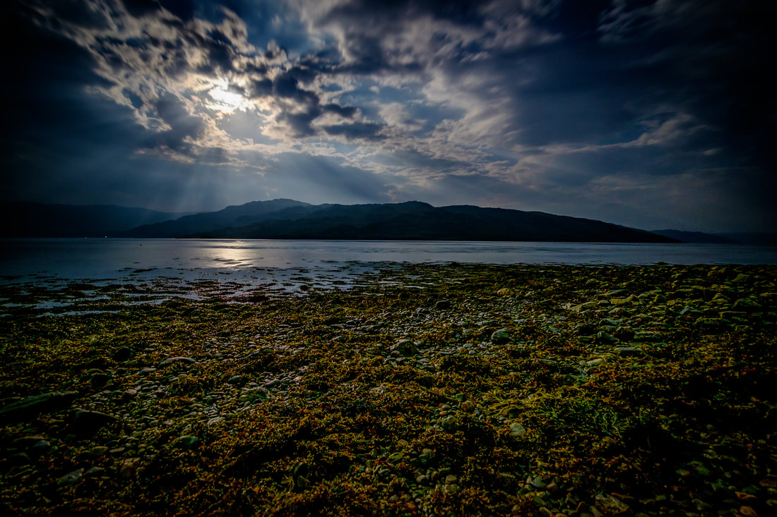 Seaweed on the shore of Loch Sunart exposed by a low tide and lit up the light of a full moon | Sunart Scotland
